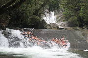 Barefoot Tours- Atherton Tablelands Tours from Cairns