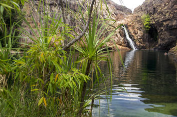 Maguk waterfall in Kakadu. Photo courtesy of Andrew Goodall